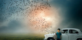 A Free World-Boy child holding bird cage freeing birds